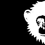 malin-com-singe-agence-de-communication-beziers-2